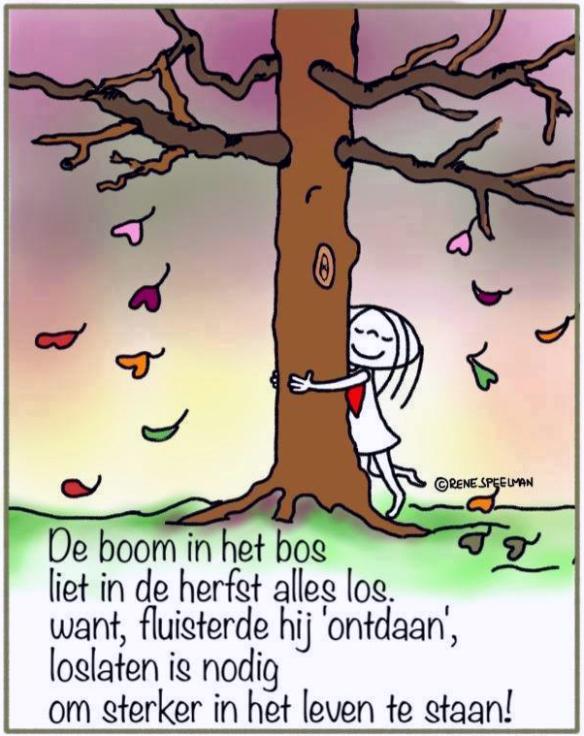 Herfst boom