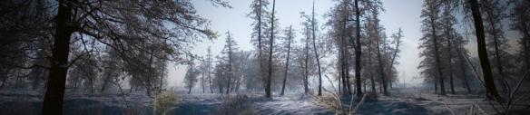 banner-winter night